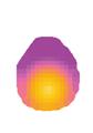 Digital Yolk Media + Web Logo